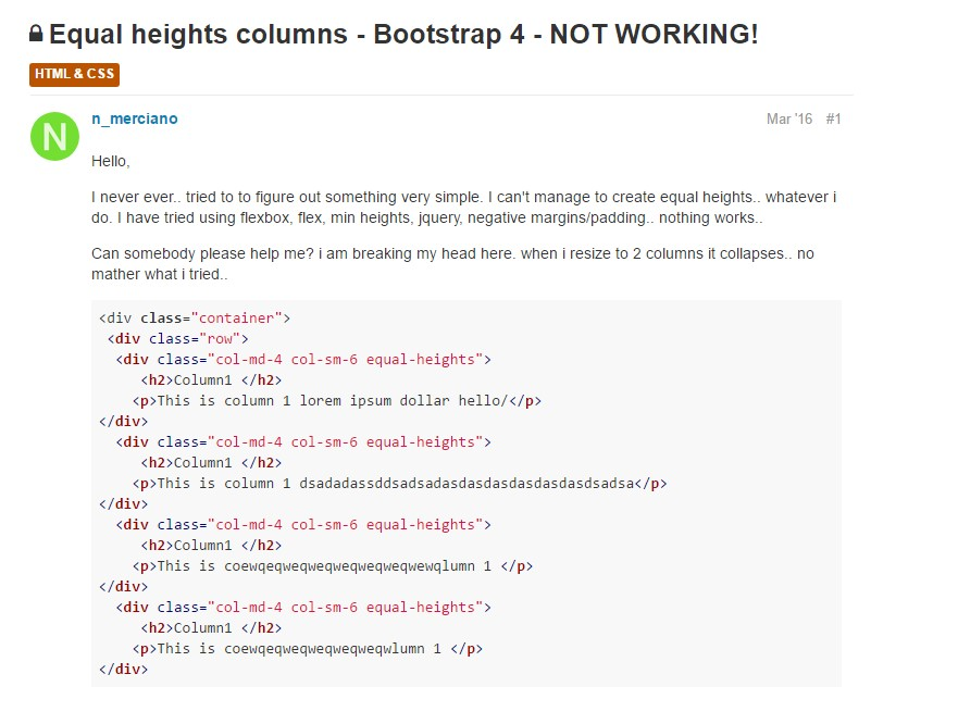 Trouble with a heights of the Bootstrap columns